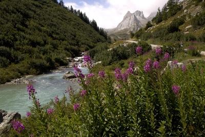 escapade nature en famille Mont-Blanc-Italie week end enfant