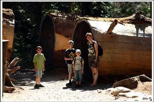 yosemite-voyage-famille-ouest-américain