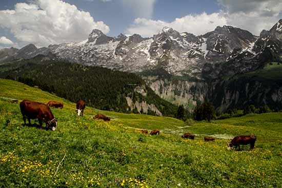 randonnée-en-famille-aravis-dans-les-alpes