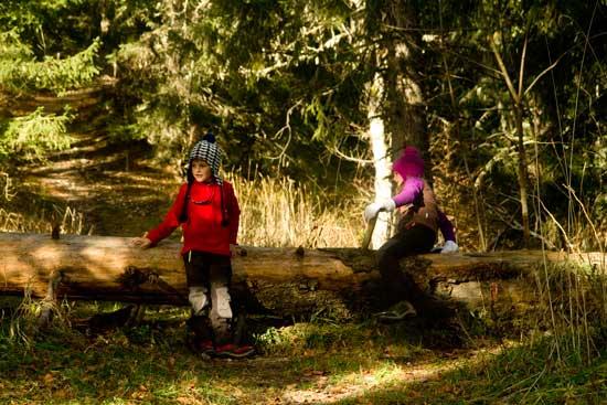 vercors-avec-enfant-en-forêt
