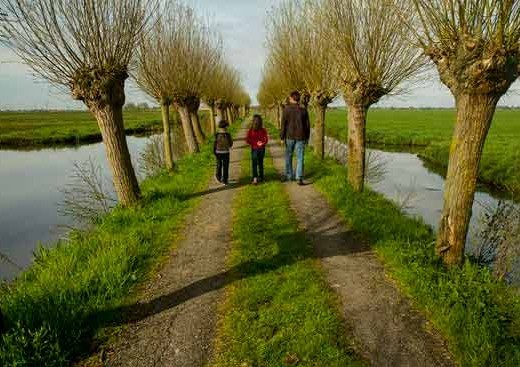 canaux-en-famille-hollande