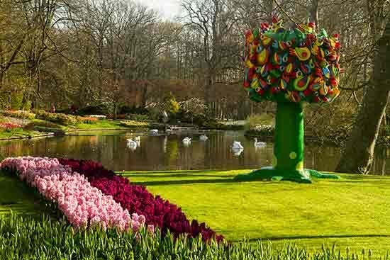 Keukenhof en hollande voyage en famille avec enfants et for Jardin keukenhof
