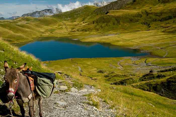randonnée-ane-alpe-lac-anterne