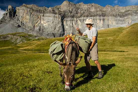 randonnée-avec-ane-alpes