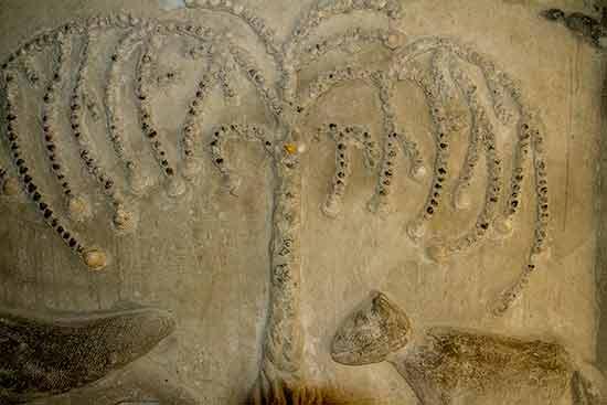 palais-idéal-du-facteur-cheval-terrasse-galerie-arbre