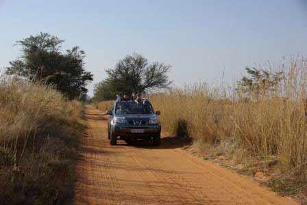 afrique-du-sud-voiture
