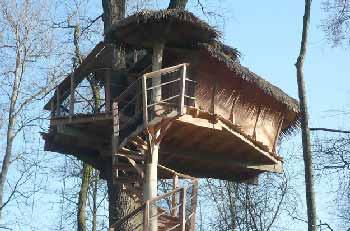 cabane-arbre-famille