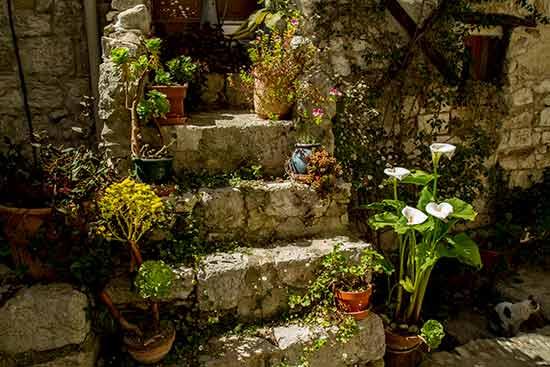Peillon-escalier-fleuri-village-arrière-pays-niçois