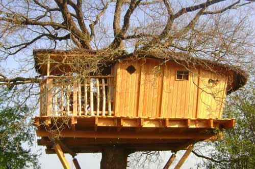 cabane dans les arbres en famille. Black Bedroom Furniture Sets. Home Design Ideas