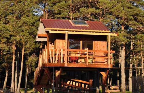 cabane-dans-les-arbres-paca