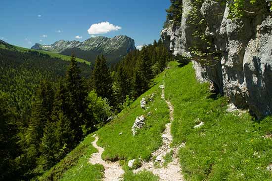 paysage-chartreuse-alpes