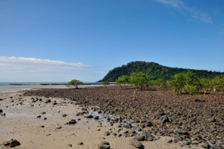 australie-plage-cape-tribulation mer