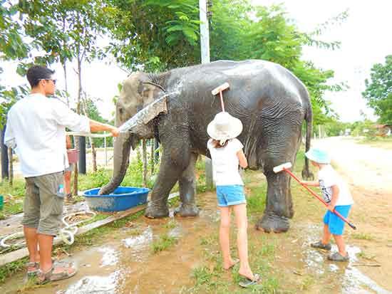 enfants-avec-elephant-thailande soin
