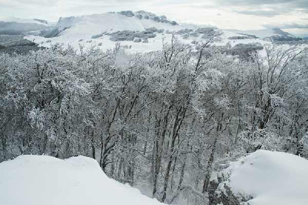 PAYSAGE-HIVER-vercors-sous-la-neige