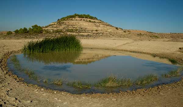 étang-désert-bardenas-espagne