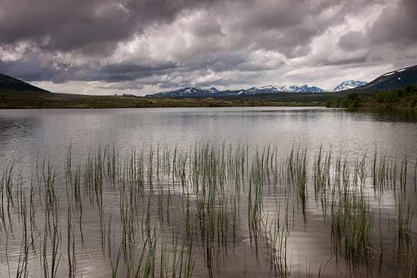 norvege-randonnée-parc-dovrefjell