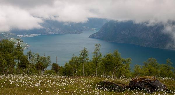 randonnée-Norvege-fjord