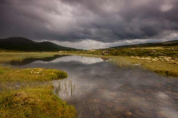 randonnée-en-norvège-parc-dovrefjell
