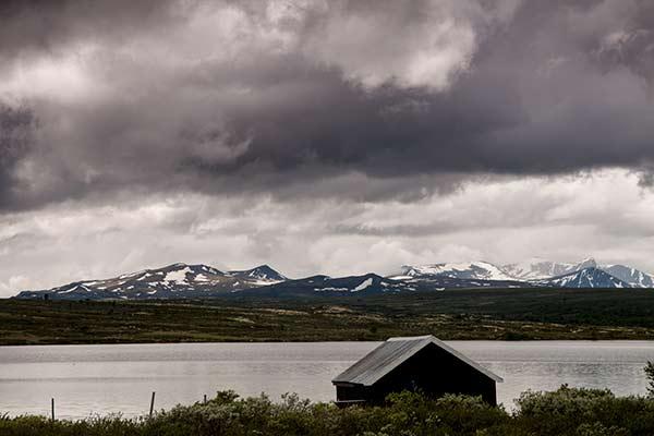 randonnée-norvege-été-parc-dovrefjell