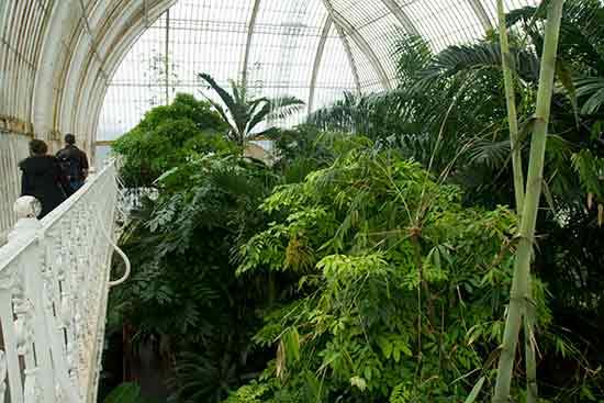 gardens-kew-Londres-en-famille