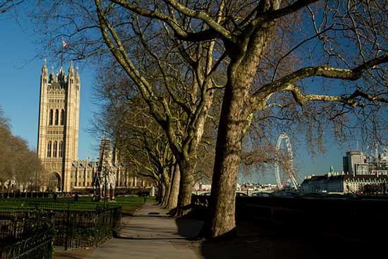 parlement-Londres-en-famille