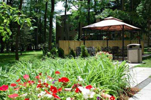 hotel-en-famille-ottawa-