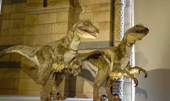 musée-londres-enfant-