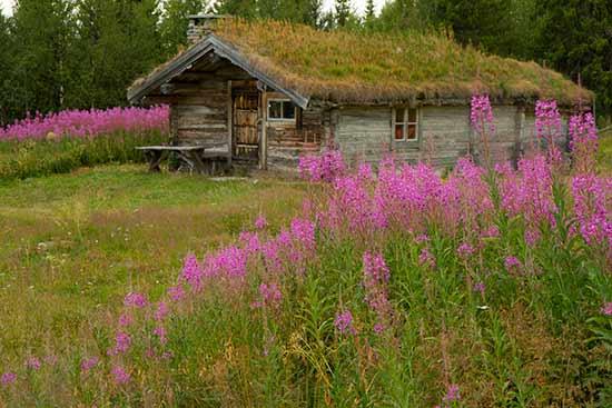 randonnée-en-suede-nord