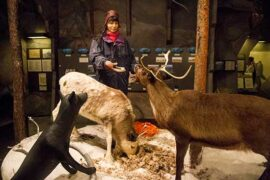 visiter-suede-musée-sami-jokkmokk