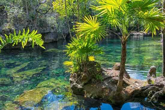 visiter-le-mexique-en-famille-cénote