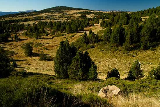 circuit-en-midi-pyrenees