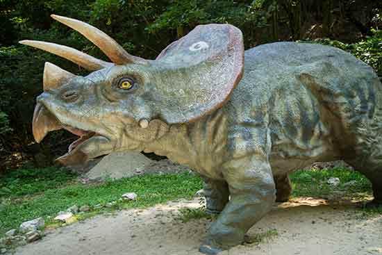 dinopark-bratislava-triceraptops