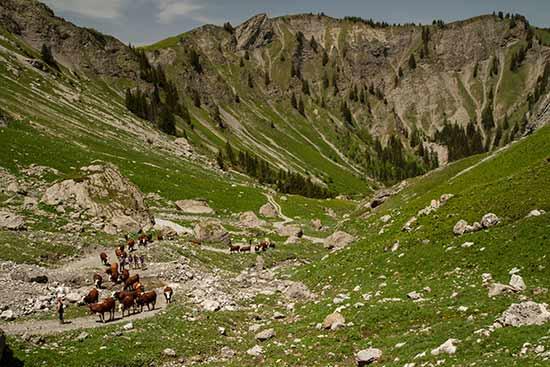 randonnée-lac-du-mont-charvin