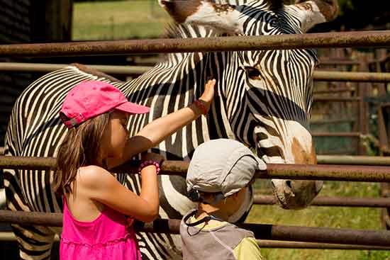 zoo-bratislava-en-famille