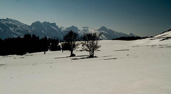 plateau-de-la-moliere-randonnee