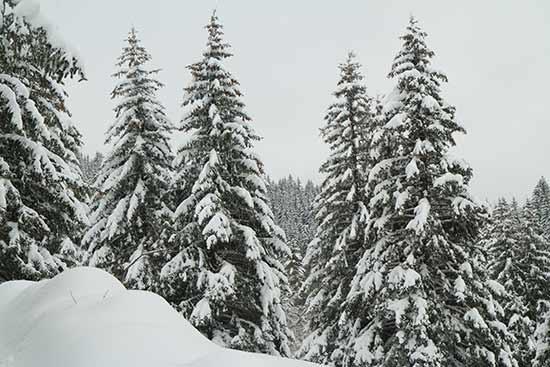 randonnée-vallon-de-la-fauge